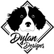 Dylan D