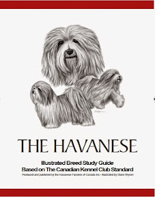 Havanese Illustrated Standard