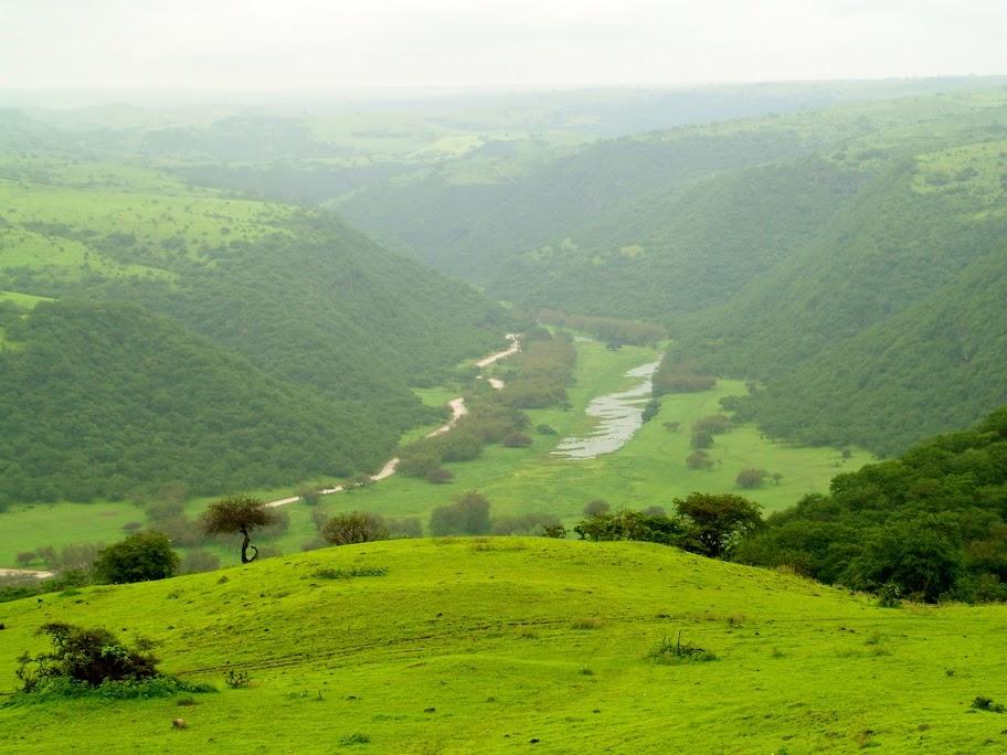 Salalah View