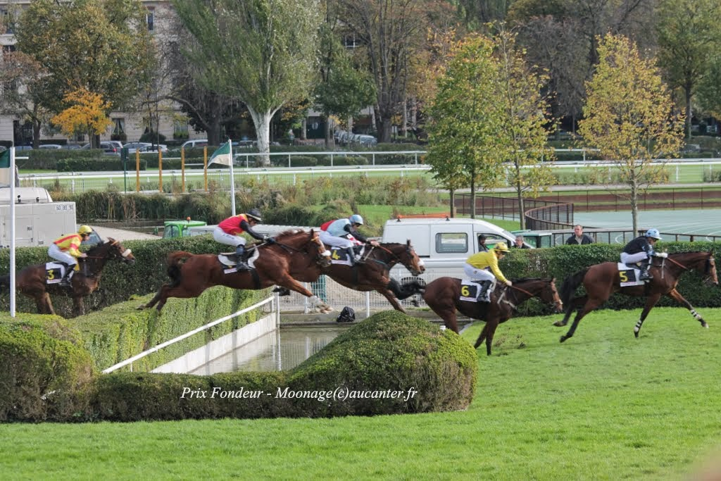 Photos Auteuil 2-11-2014 (48h de l'obstacle) IMG_5280