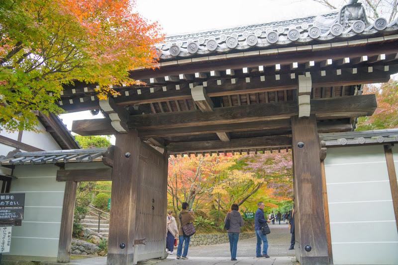 京都 紅葉 龍安寺 写真1