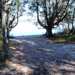 A waterview and beach at Freshwater Camping Area
