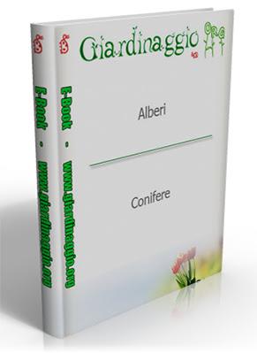 Manuale - Giardinaggio - ( Alberi - Conifere ) 4 ebook  N/D Ita
