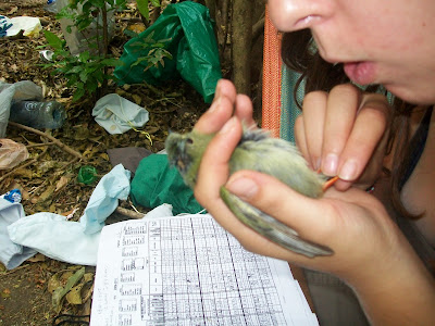 biodiversity research Nicaragua
