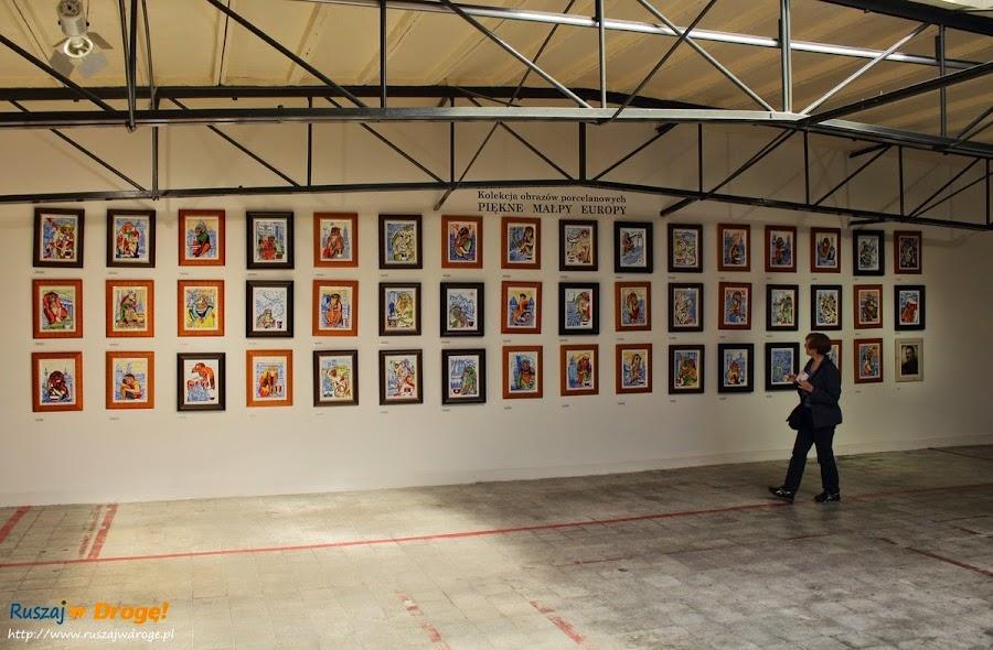 AS Ćmielów - wystawa Piękne Malpy Europy Adama Spała
