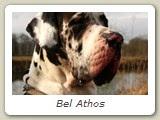 Bel Athos