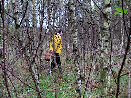 poszukiwacz grzybów - Maciej