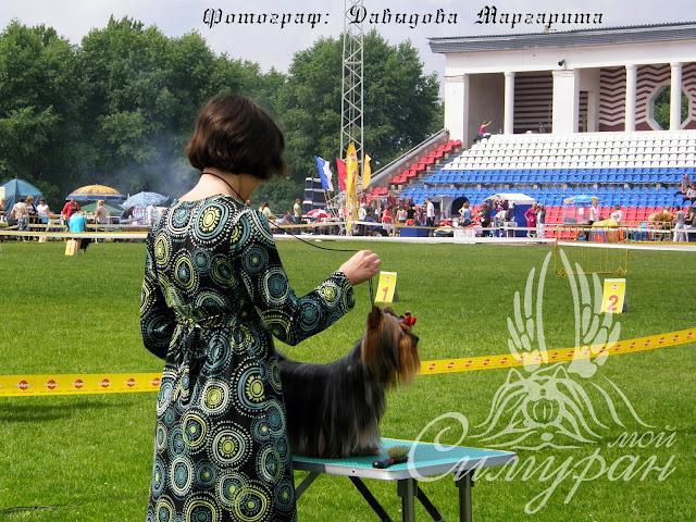 18-19 июня 2011г. Беларусь (2хСАС) - Смоленск CACIB (фотоотчёт) 38