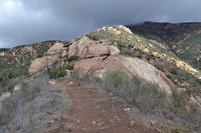 trail into the rocks