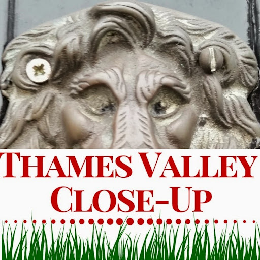 The Thames River Vally Close-Up