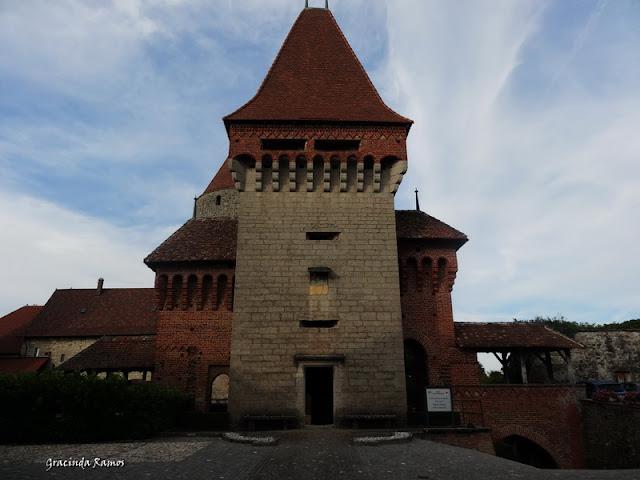 passeando - Passeando pela Suíça - 2012 - Página 15 DSC05443