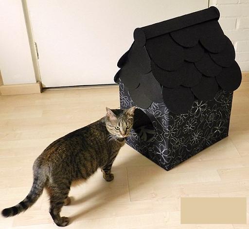 стильный домик для кошки из коробки