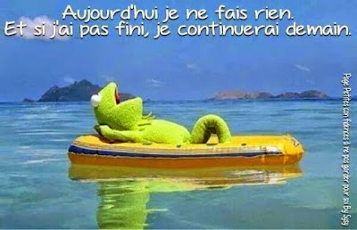 citation, mercredi, happy journal, vacances, kermit