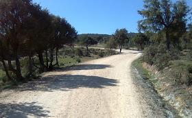 ¿Nos acompañas el sábado 16 de febrero en nuestra Vuelta al embalse de Santillana?