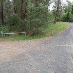 Start of Taylors Rd lower trail (229858)