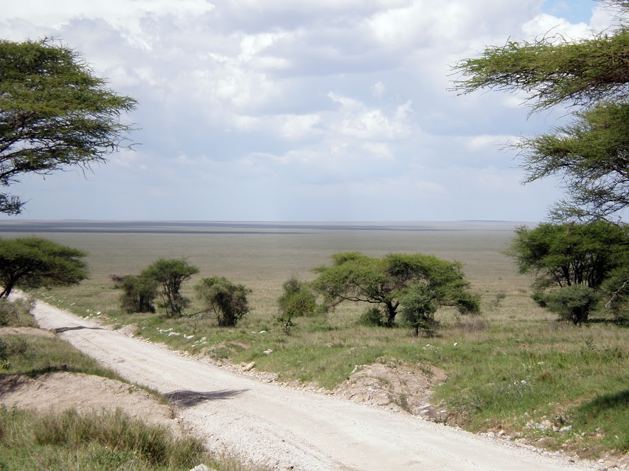 Serengeti National Park - Endless plains