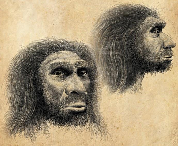 Homo heidelbergensis. Ilustración de Stuart Jackson-Carter.