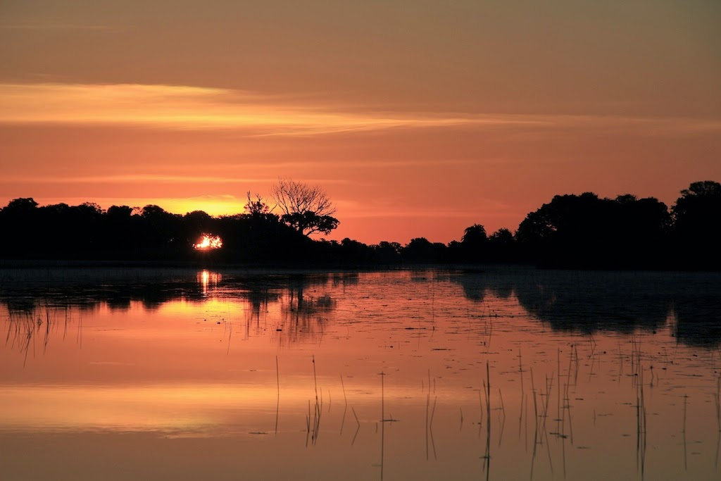 One of the Best Sunsets in the World: Okavango Delta Sunset