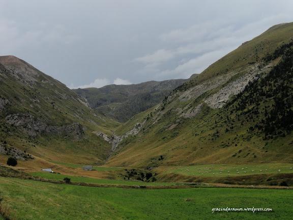 passeando - Passeando até à Escócia! - Página 17 DSC05646