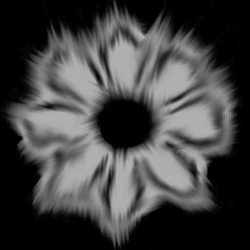 floral3eightpetals.jpg