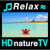 Расслабляющая музыка и мягкий шум прибоя на экзотических пляжах