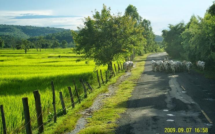สุดๆ กับเส้นทางปั่นจักรยานที่ปลอดภัย แถมท่องเที่ยวอีสานใต้ ไม่ไกลจากกรุงเทพฯ