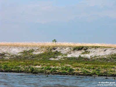 Grindul Caraorman - o întindere de nisip alb