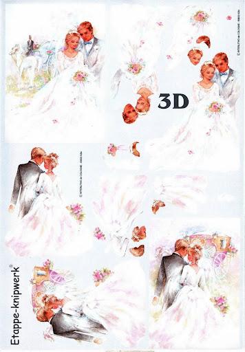 15 (7).jpg