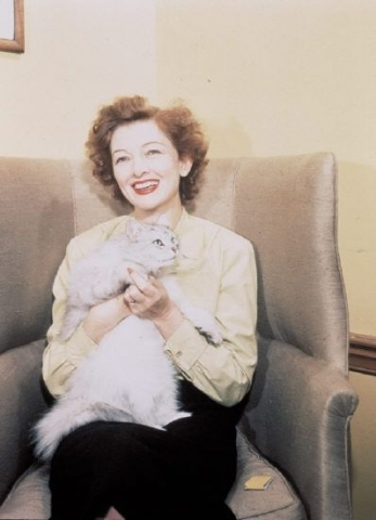 Myrna Loy and a cat