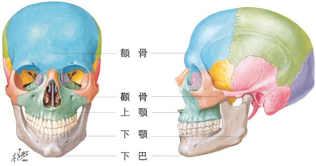削骨手術,削顴骨,顴骨雕塑,下顎骨雕塑,下巴