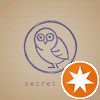 Secret Owl