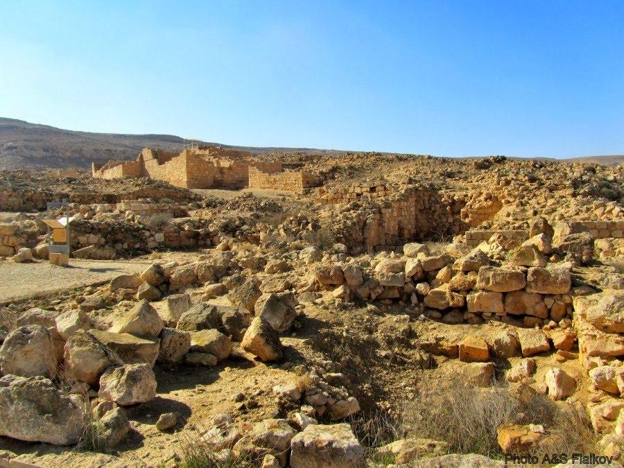 Экскупсия в пустыню Негев, древний город набатеев Мамшит.