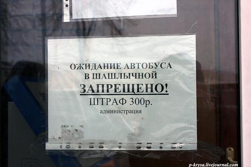 Вечерняя Казань: p_krysa — LiveJournal