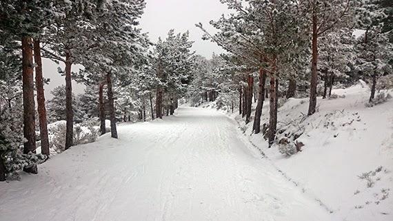 Ruta de Cercedilla a Madrid por el valle del Lozoya ¡con nieve! - sábado 31 de enero 2015. Nuestro 'gran reto' de enero