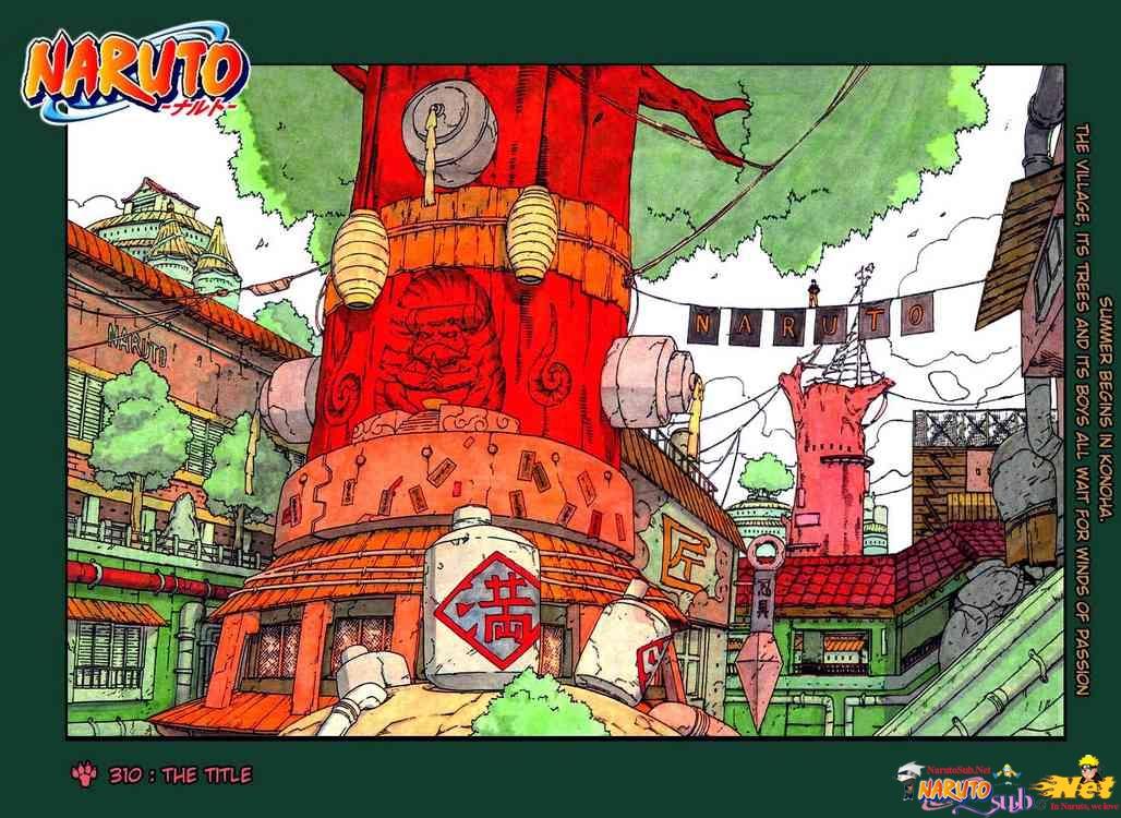 tz 1, Naruto chapter 310    NarutoSub