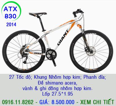 XE ĐẠP THỂ THAO, xe dap the thao, xe dap trinx, xe đạp thể thao chính hãng, xe dap asama,  atx830 8t5