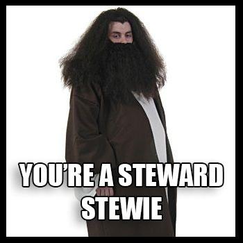 You're a Steward, Stewie meme