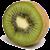 kiwihosting.net.nz GPlus Icon