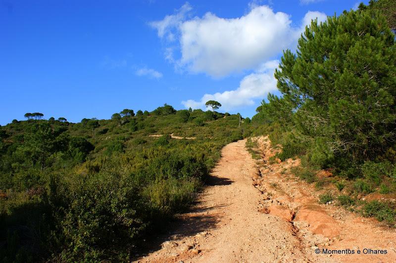 Os caminhos da serra da Arrábida
