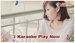 Karaoke - Áo Mới cà Mau (Beat)