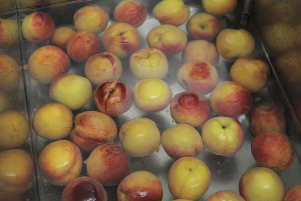 These sinks are ideal for shocking the skins off peaches.