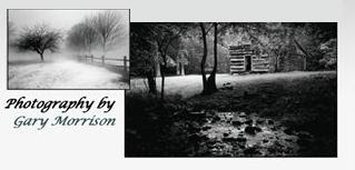 The Photography of Gary Morrison
