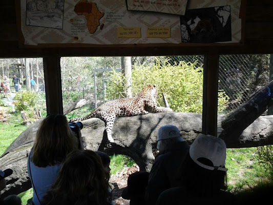 Columbus Zoo and Aquarium, 4850 West Powell Road, Powell, OH 43065, United States