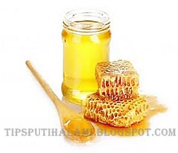 gambar madu