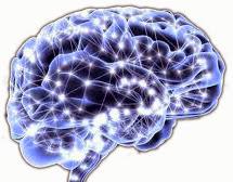 cerebro creando patrones