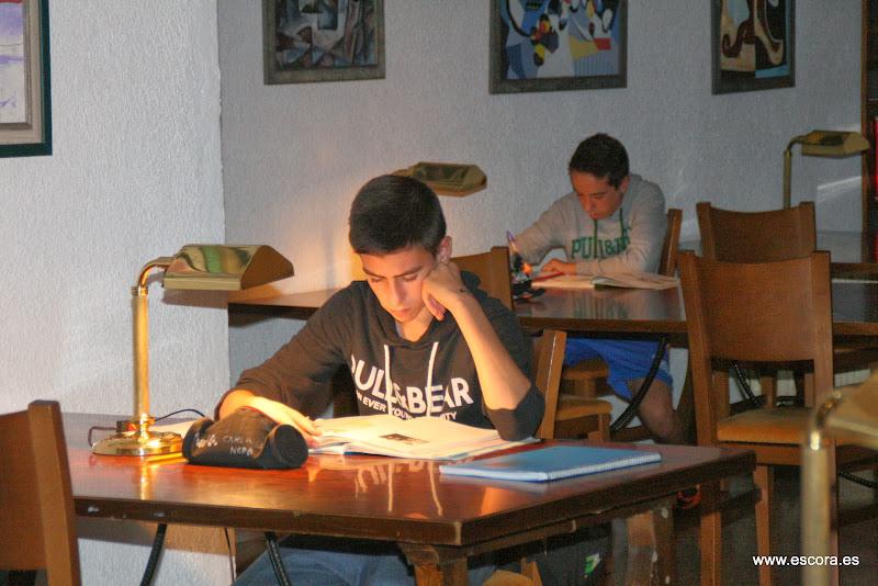 programa estudio maximus club juvenil escora