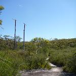 Disused power poles (380957)