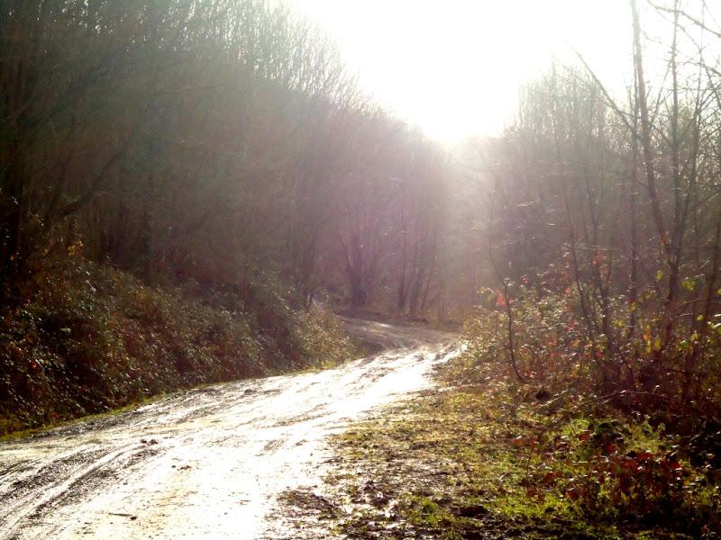 """Camino de """"La Vía Carisa"""""""