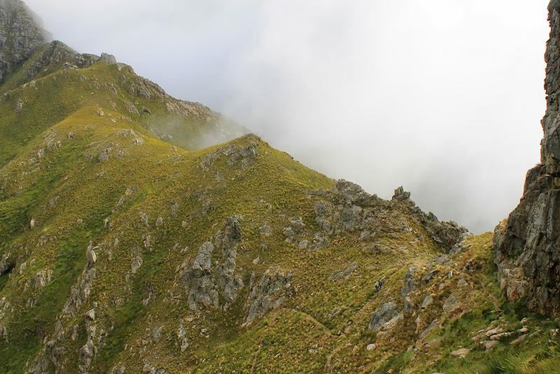 Bergriviersnek in the mist