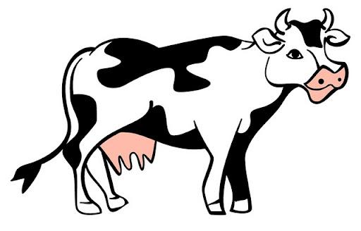 cow_blackwhite.jpg